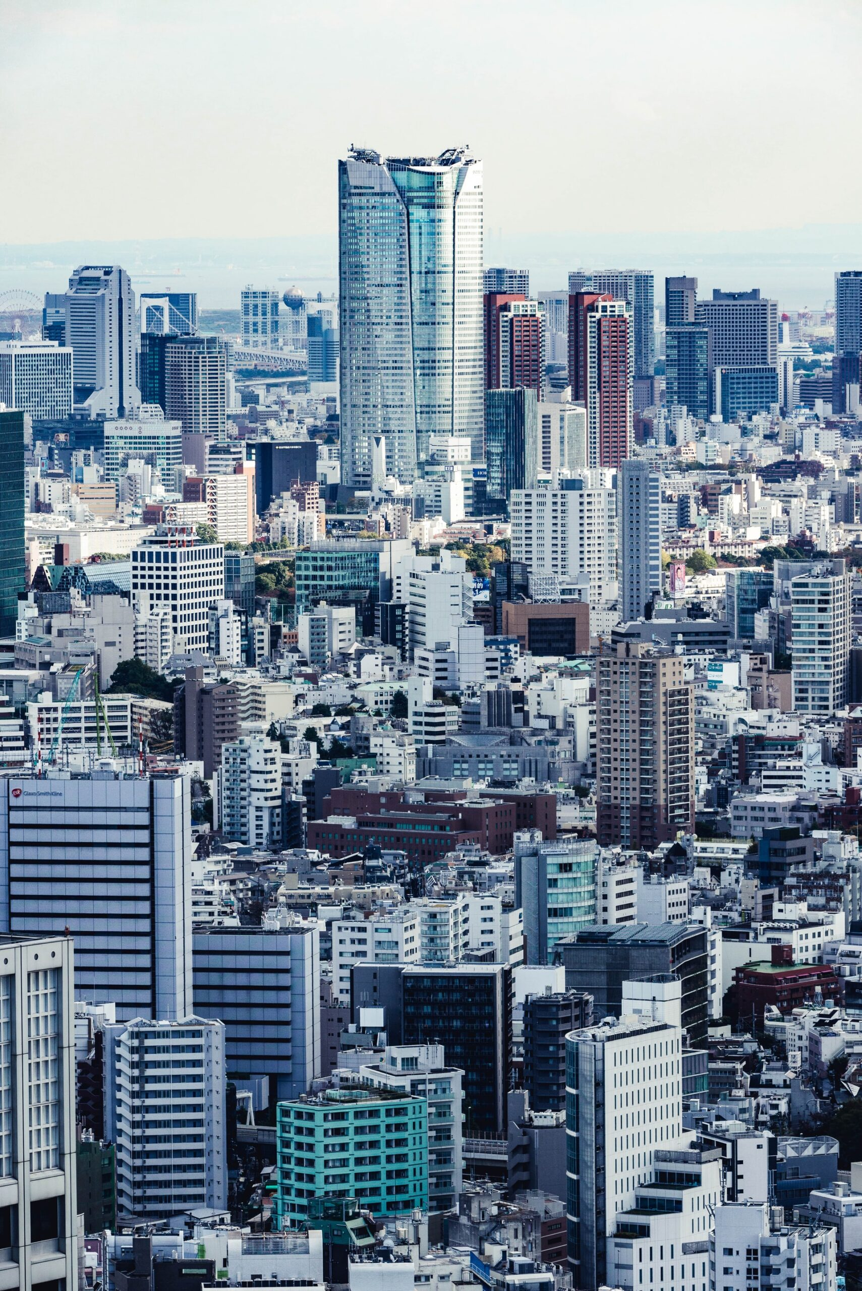 Smart Cities & Innovation in Japan