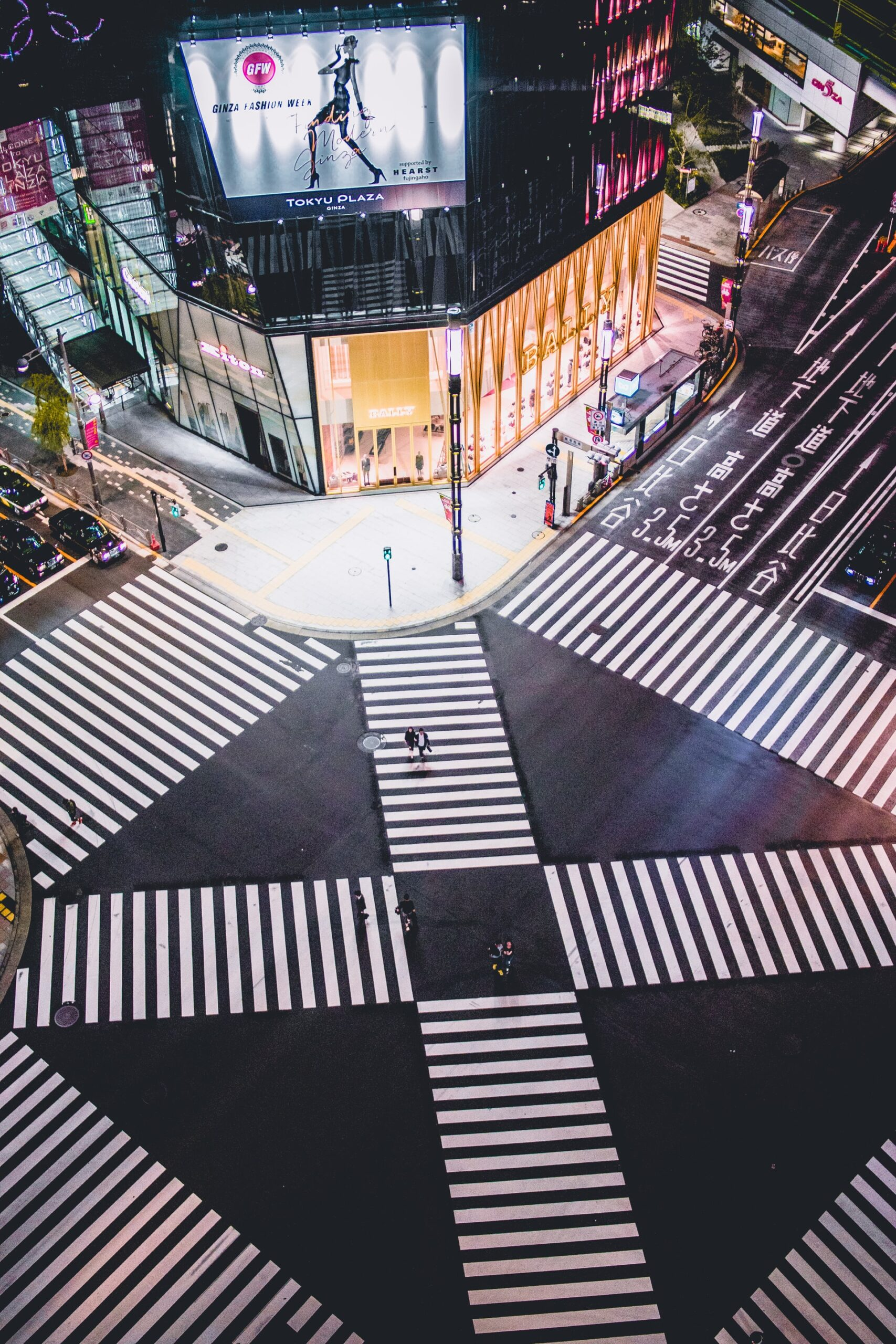 Software & E-Commerce Sector in Japan