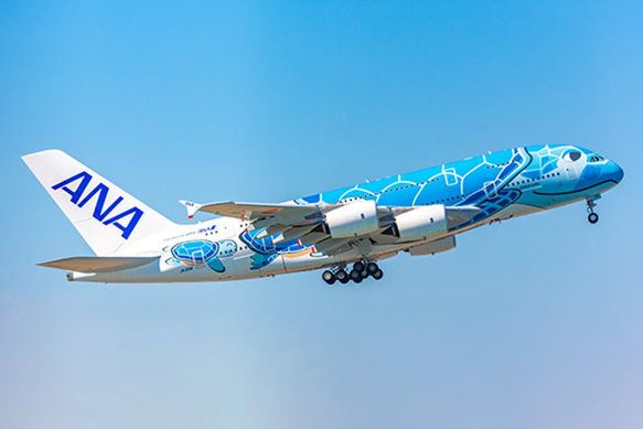 ANA travel in Japan